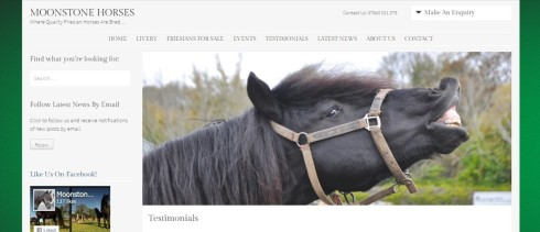 Moonstone Horses 2