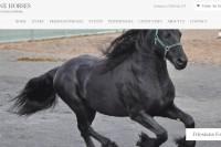 Moonstone Horses Homepage